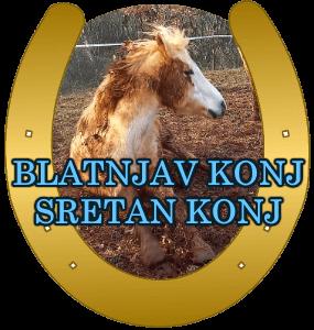 blatnjav-konj-sretan-konj