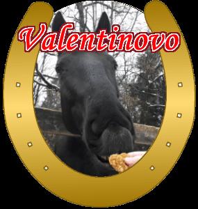 keksici-za-valentinovo
