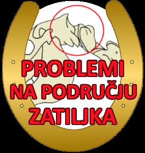 problemi-na-podrucju-zatiljka