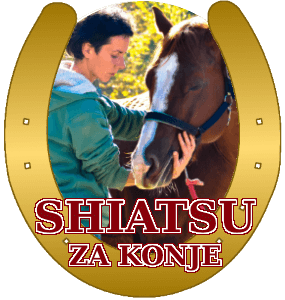 shiatsu-za-konje