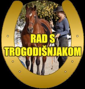 trogodisnji-konj