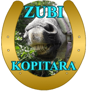 zubi-kopitara